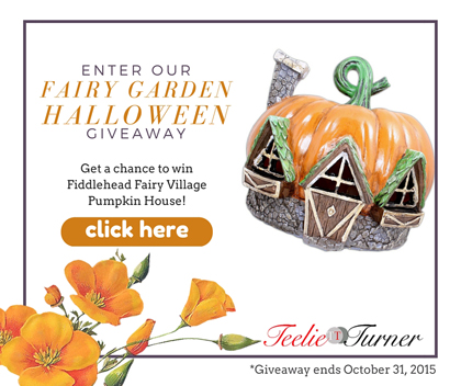 PUMPKIN HOUSE for giveaway page