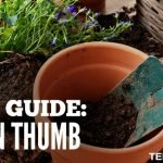 Gift Guide: Green Thumb