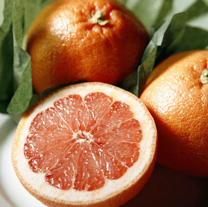 Sugar Red Grapefruit