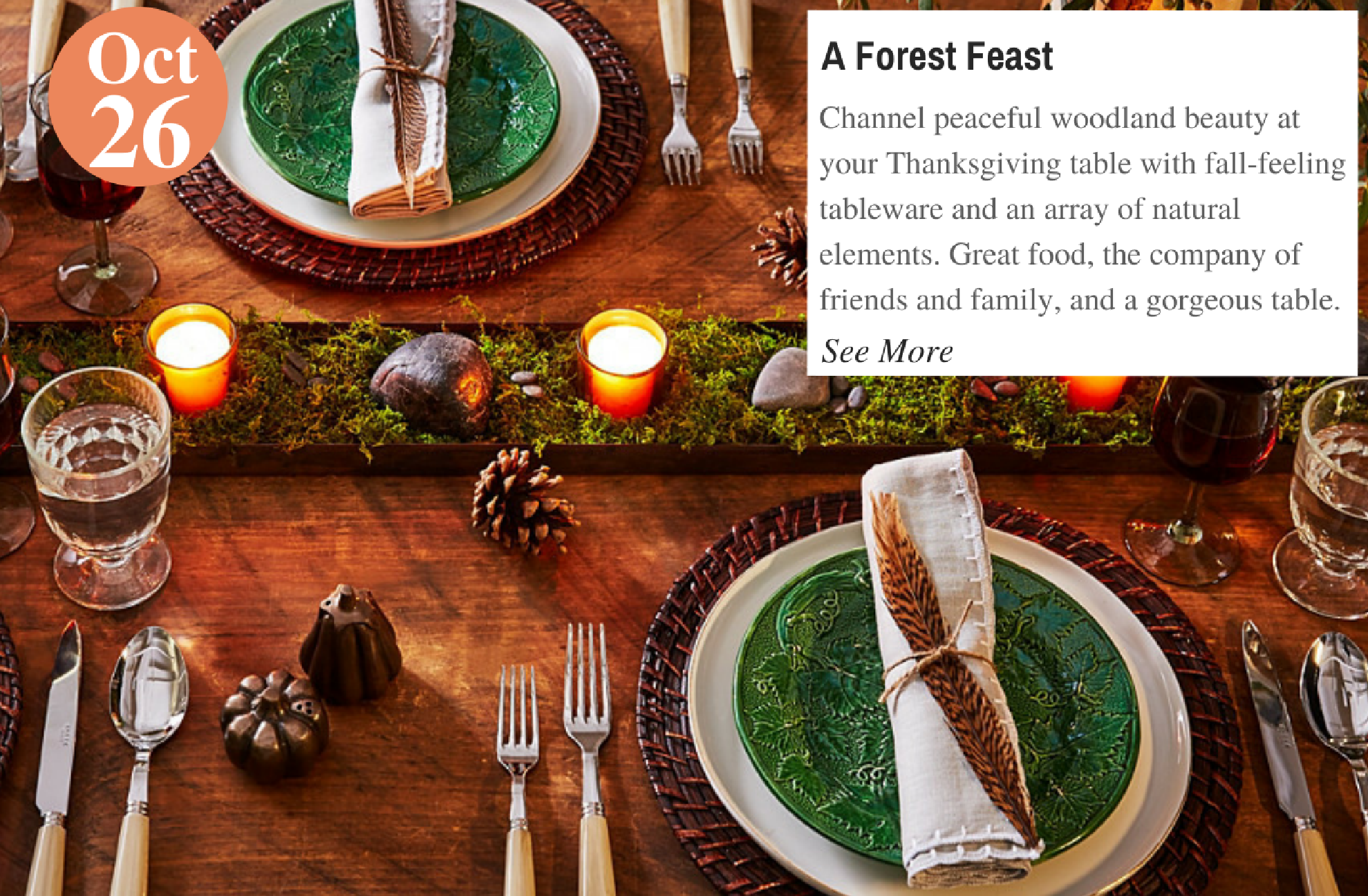 A Forest Feast