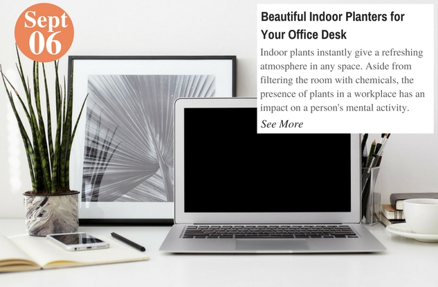 Beautiful Indoor Planters for Your Office Desk