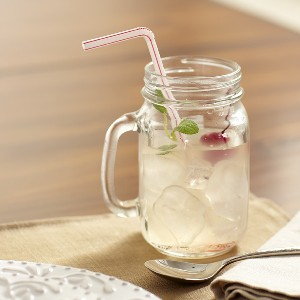 Birch Lane Drinking Jars with Handles