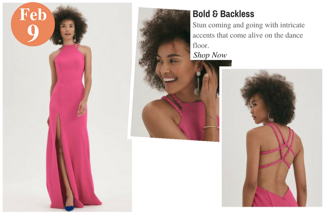 Bold & Backless