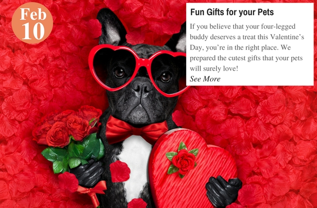 Fun Gifts for your Pets