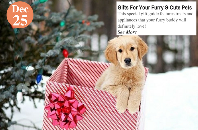 Gifts For Your Furry & Cute Pets (2)