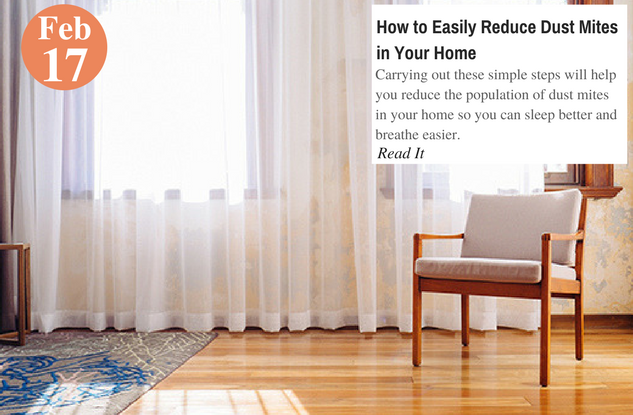 How to Easily Reduce Dust Mites in Your Home