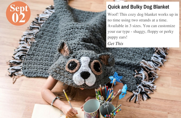 Quick and Bulky Dog Blanket
