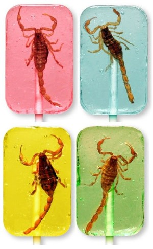 REAL Scorpion Lollipop!