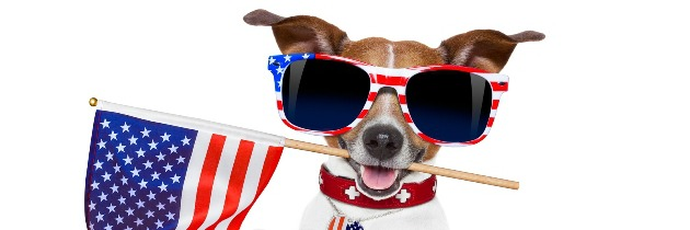 Fourth of July Safety Tips for Your Pets