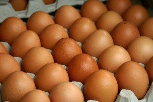 GRASS FED, NON-GMO FED FREE RANGE BROWN CHICKEN EGGS
