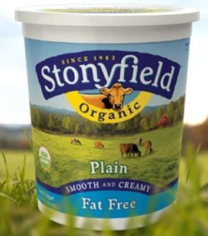 Stonyfield Farm Organic Fat Free Plain Yogurt