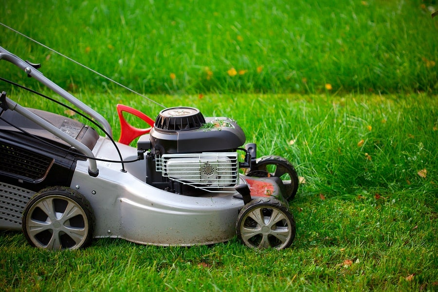 These Gadgets Can Help You Keep Your Lawn in its Pristine Condition