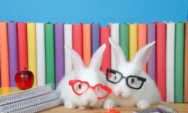 Easter Reads: Here are Top 10 Books We Recommend for Young Readers